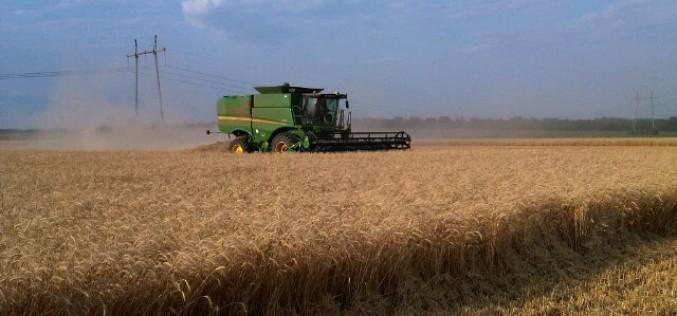Мировые цены на продовольствие из-за засухи поднялись на 10%