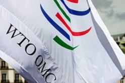 Через месяц Россия станет членом ВТО, а действующие тарифы будут изменены