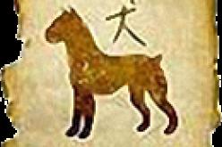 Финансовый гороскоп на 2015 год для знака зодиака «Собака»