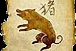 Финансовый гороскоп на 2015 год для знака зодиака «Кабан»