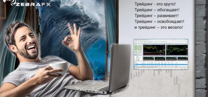 Обзор брокерской компании ZebraFX