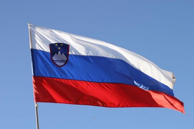 Словенский флаг