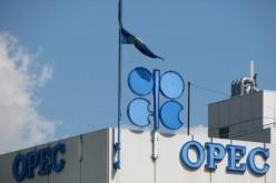 ОПЕК ожидает роста спроса на нефть в 2014 году